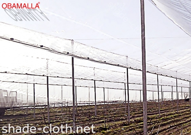 raschel mesh for protection of the crops and them harvest.